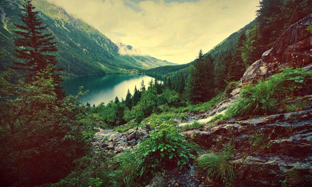 Article Campingcarix le Gaulois 1