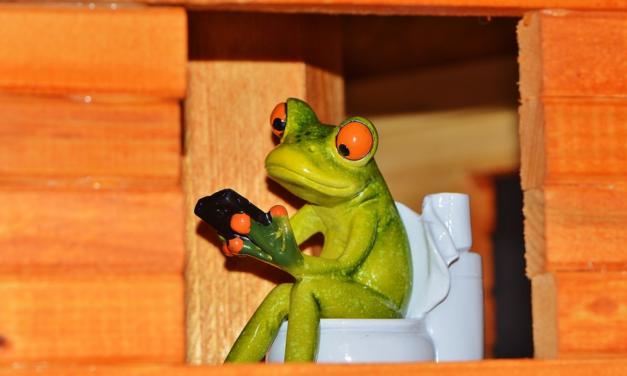 Nettoyer efficacement et en profondeur les toilettes de la caravane